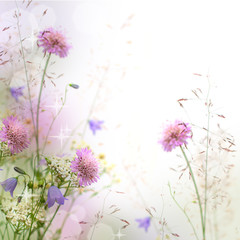 Fototapeta Florystyczny Beautiful pastel floral border - blurred background