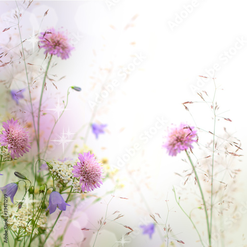 Beautiful pastel floral border - blurred background