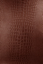 Brown Crocodile Leather Texture