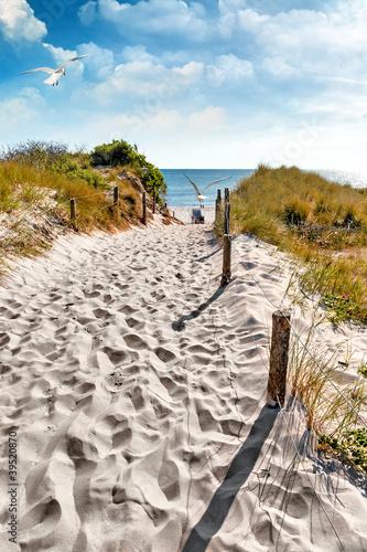 Fototapeta morze Bałtyk piekna-plaza-nad-morzem-baltyckim