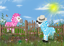 Country Zebras