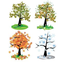 Four seasons - spring, summer, autumn, winte