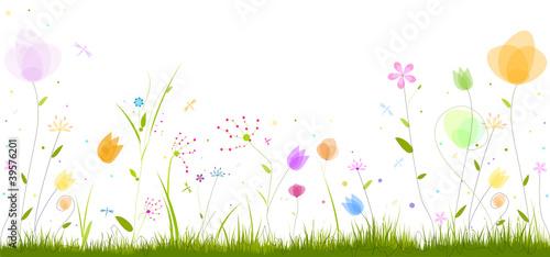 Fotografía frise florale