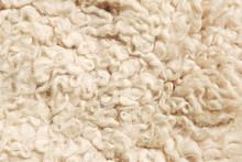Sheep Fur Texture.