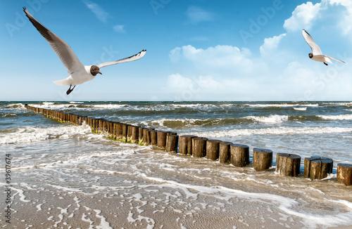 Keuken foto achterwand Noordzee Ostseestrand