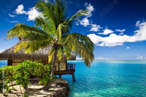 tropikalny-domek-i-palma-obok-niesamowitej-laguny