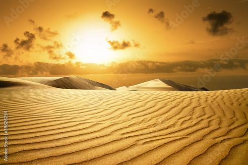 Poster de jardin Desert de sable Gold desert. Sunset beach.