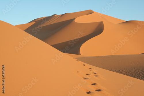 Papiers peints Algérie Spuren im Sand