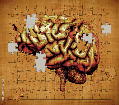 ukladanie-mozgu-ludzkiego-z-puzzli