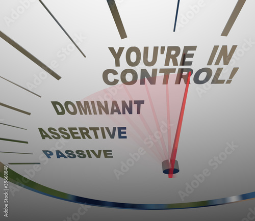 You're in Control Speedometer Agressive and Assertive Canvas Print