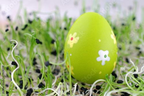 Fototapeta Pisanka jajko wiosna rzeżucha obraz