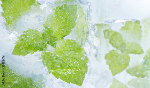 Ice cubes and fresh mint