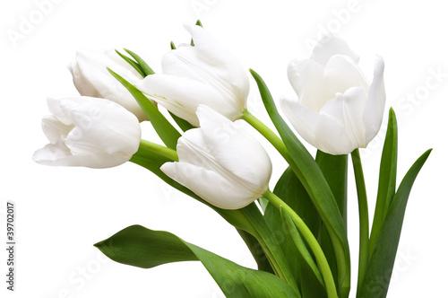 Stickers pour porte Tulip White tulips