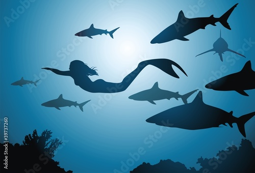 Wall Murals Mermaid The mermaid and sharks
