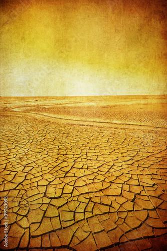 Papiers peints Cactus grunge image of desert landscape