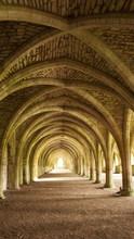 Abbey Ruin Arches