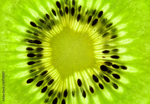 Photo Stands Slices of fruit Fresh Kiwi background / SuperMacro / back lit