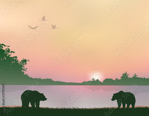 Wall Murals Bears bears on the shores of Lake