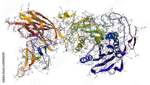 Photo  Enzyme pancreatic lipase-colipase complex