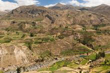 Colca Valley, Peru
