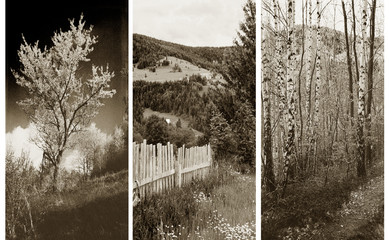 Fototapetaold traditional photography - Rural views, triptych