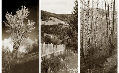 Fototapeta Wieloczęściowe old traditional photography - Rural views, triptych
