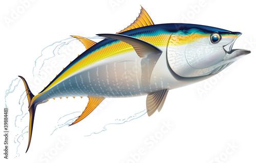 Photo Yellowfin tuna