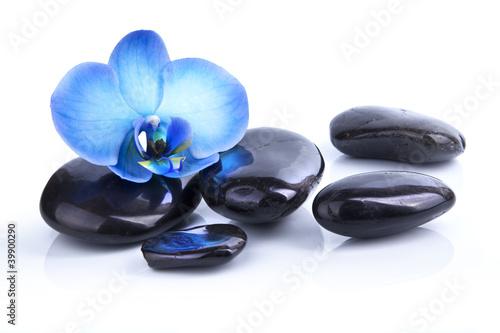 Recess Fitting Zen Relaxation et Bien-être