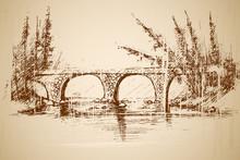 Foot Bridge In Park