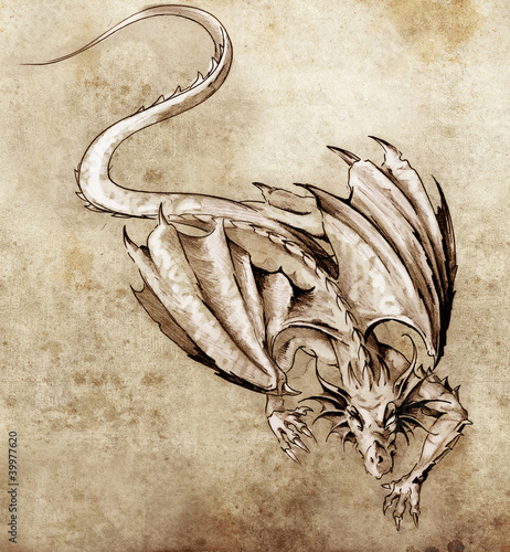 Sketch of tattoo art, modern dragon