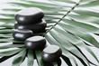 Spa stones on green palm leaf on grey background