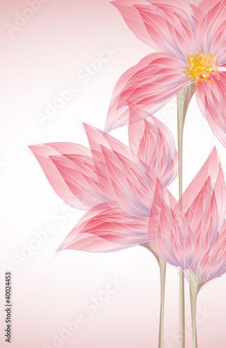 karta-zaproszenie-z-kwiatem
