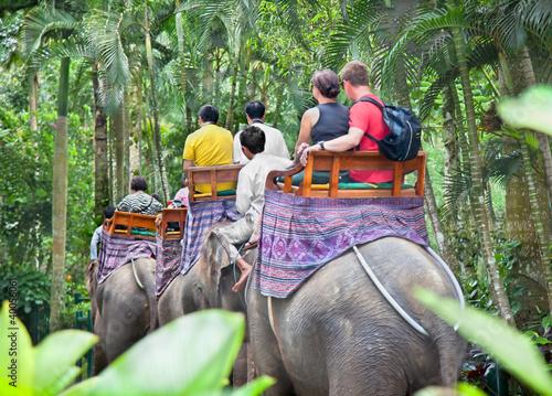 Foto op Plexiglas Indonesië BAKAS ELEPHANT SAFARI, Bali, Indonesia