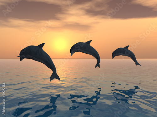 Staande foto Dolfijnen Jumping Dolphins