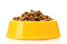 Dry Cat Food In Yellow Bowl  Isolated On White