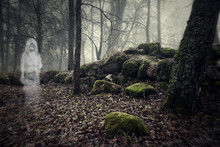 Ghost Of A Woman In The Wood