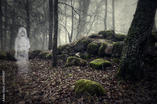 Fotografie, Obraz  Ghost of a woman in the wood