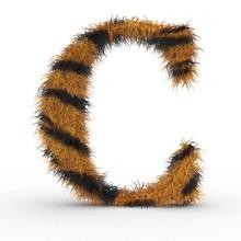 Texteffekt Haare Tiger C