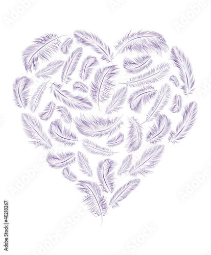 Naklejka premium Pióra w kształcie serca