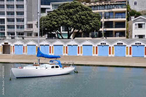 Harbor of Wellington, New Zealand