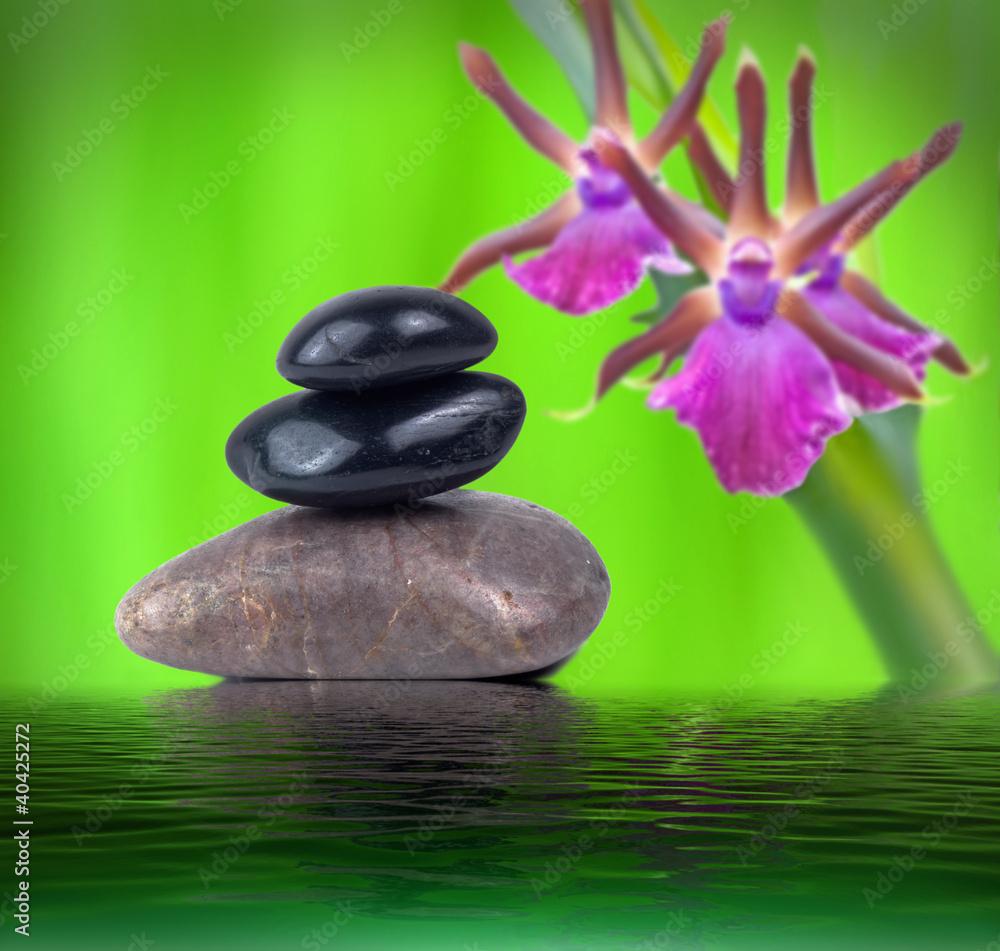 Doppelrollo mit Motiv - Steine und Orchidee