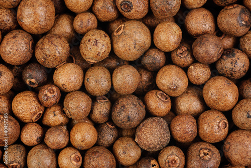 Background texture of whole allspice(jamaica pepper). Macro. Canvas Print