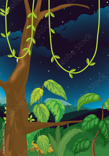 Printed kitchen splashbacks Forest animals Nature scene