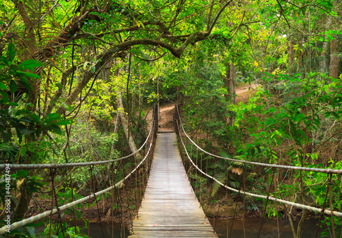 Keuken foto achterwand Bruggen Bridge to the jungle,Khao Yai national park,Thailand