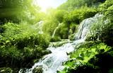wodospad w głębokim lesie - 40542809