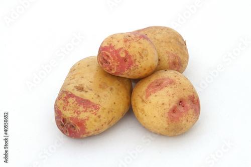 Fotografie, Obraz  Organic potatoes on a white background.