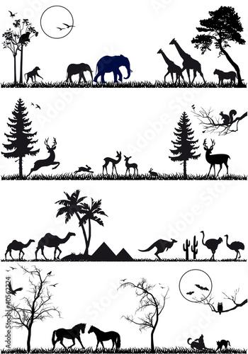 przyrody-tla-zwierzecy-set-wektor