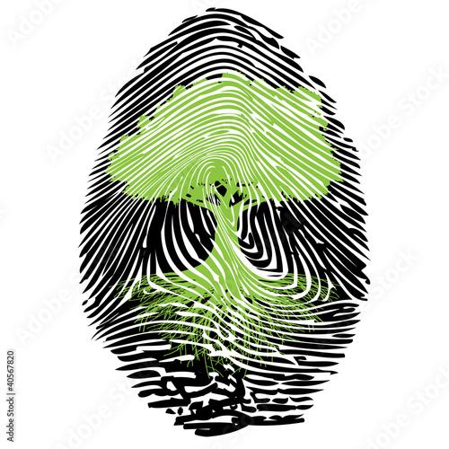 Obrazy tajemniczy ogród   podpis-ekologiczny