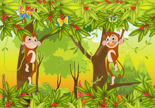 Photo Stands Butterflies monkeys