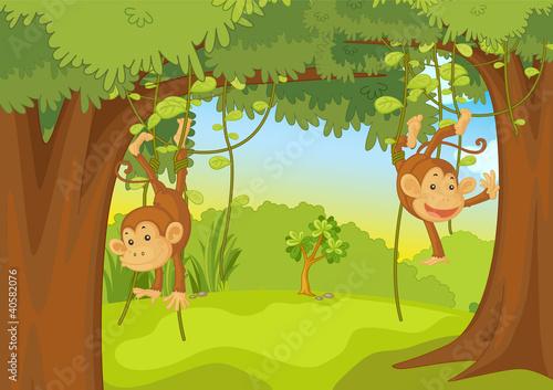 monkeys #40582076